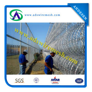 ISO 9001 Concertina Razor Barbed Wire pictures & photos