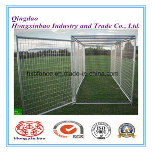 Dog Kennel or Dog Cage for Sale/Stackable Folded Galvanized Steel Welded Storage Cage pictures & photos