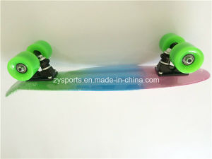 Penny Board Colorful Rainbow Skateboards