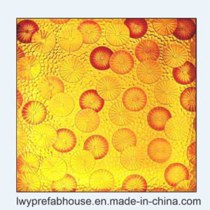 CE/ISO/as Standard Acid Etched Paint Decorative Glass for Multi-Purpose (LWY-LG31)