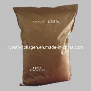 Collagen, Fishskin Collagen, Bovine Collagen pictures & photos