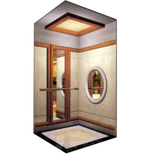 Villa Luxury Passenger Elevator Lift pictures & photos