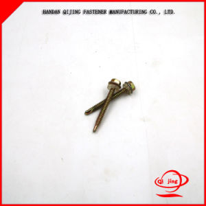 ISO: 9001standard Hot Sale Pan Head Self Tapping Screw Pan Head or Round Head Self Tapping Screws, Machine Screw pictures & photos