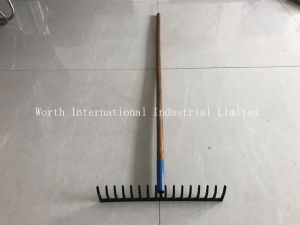Garden Rake pictures & photos