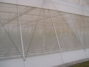 HDPE Greenhouse Anti Insect Net with Top Quality pictures & photos