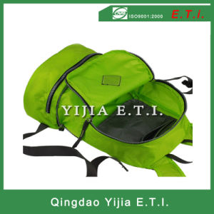 Customized Foldable Polyester Backpack pictures & photos