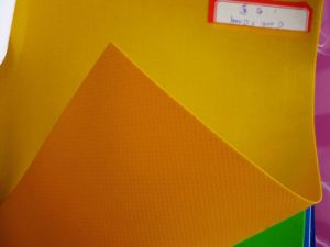 PVC Mesh Fabric for Digital Printing (1000DX1000D)