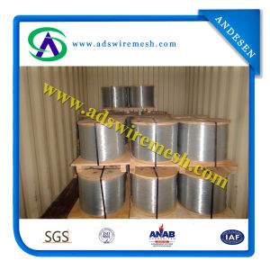 Galvanized Wire (0.1MM-6.5MM) pictures & photos