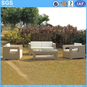 Garden Furniture Wicker Sofa Wholesale pictures & photos