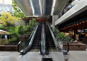 Indoor Commercial Passenger Escalator for Supermarket by Experienced Manufacturer pictures & photos