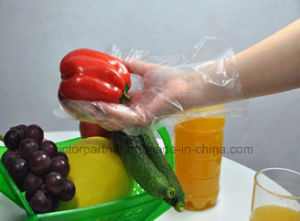 High End Disposable Gloves Powdered Vinyl Gloves for Food Industry pictures & photos