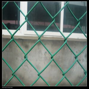 PVC Coated Chain Link Mesh pictures & photos