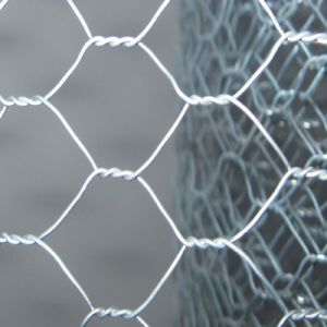 Double Twisted Hexagonal Mesh Netting pictures & photos