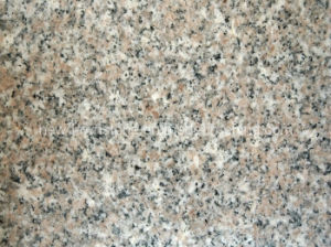 Red / Pink/ Rosa Granite G636 Tile for Wall and Floor