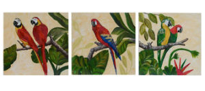 3 PCS Group Handmade Parrot Oil Paintings on Canvas (LH-065000) pictures & photos
