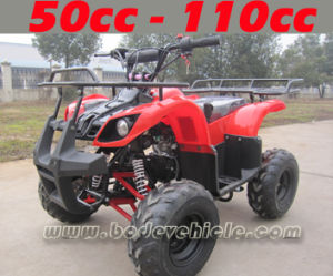 Automatic 110cc Quad CE Approved (MC-313) pictures & photos