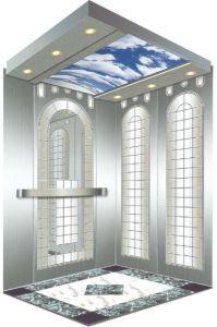 Home Hydraulic Villa Elevator (RLS-103) pictures & photos