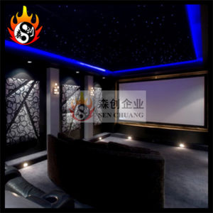 New 3D Cinema/Theater System (SCH-3D08) pictures & photos