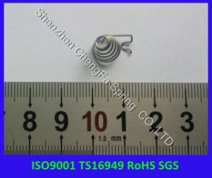 ISO9001 Ts16949 RoHS Compliant SUS304 Spring