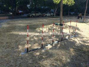 Pet Dog Agility Training Pole Dog Slalom pictures & photos