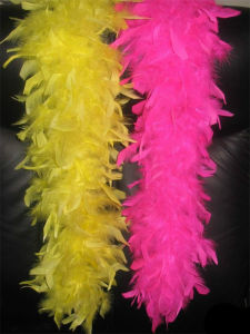 High Quality Feather Trimming for Decorations pictures & photos
