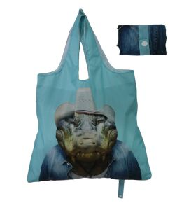 Colorful Printing Design Folding Recycle Bag Customized pictures & photos