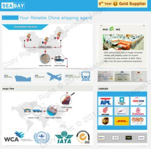 High Competitive LCL/FCL Consolidation Shipping Service China to USA pictures & photos