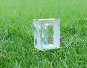 House Decorative Wec Glass Brick pictures & photos