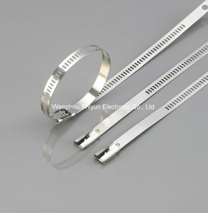 Naked Stainless Steel Cable Ties -Multi Barblock Type pictures & photos