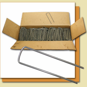 High Quality Galvanized SOD Staples pictures & photos