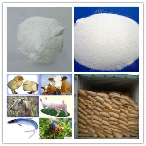 Hot Selling Betaine Anhydrous 98% pictures & photos