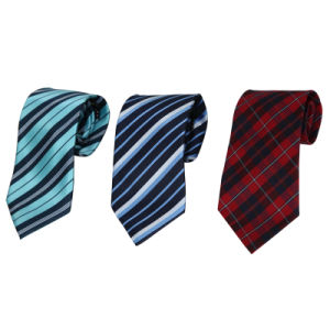 Micro Fiber Novelty Ties pictures & photos