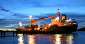 FCL Sea Freight From Xiamen/Shenzhen/Shanghai/Ningbo to Muscat