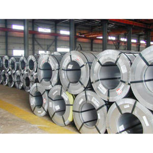Long Life Galvanized Coil