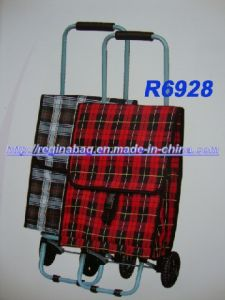 Shopping Trolley, Shopping Bag 28 pictures & photos