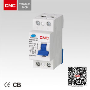 Hot Product Residual Current Circuit Breaker (YCB6RL-1P) pictures & photos