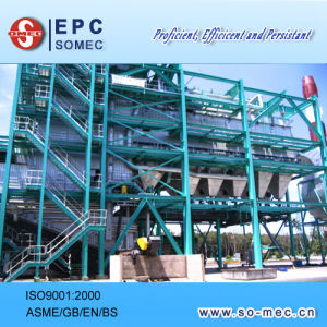Power Plant Palm Waste Fired Boiler pictures & photos