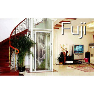 Home/Villa Elevator/Lift pictures & photos