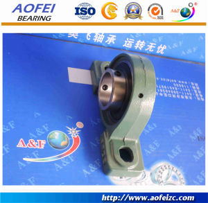 Chinese manufacturers block ball bearing bracket UCP313 Pillow Block Bearing pictures & photos