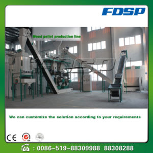 Wood Biomass Fuel Pellet Press Making Line pictures & photos