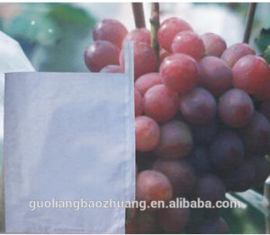 Chile Welcomed Micro Pore Protect Grape Paper Bag pictures & photos
