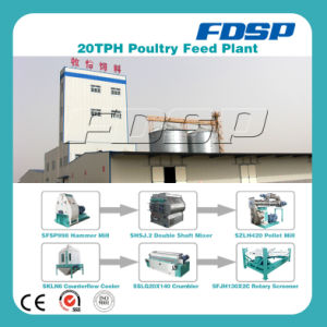 Good Price Discount 20tph Feed Production Mill pictures & photos