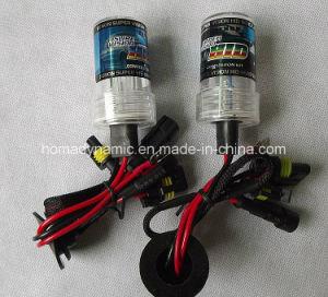12V/24V 35W/50W 880 HID Xenon Bulb 3000k-30000k in Stock pictures & photos