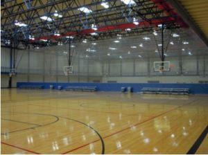 Indoor PVC Sports Floor /Basketball Floor/Mat Fiba Certificate Wooden Surface pictures & photos
