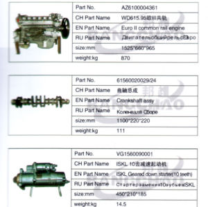 Sinotruck HOWO Truck Spare Parts Auto Accessories Common Rail Engine pictures & photos