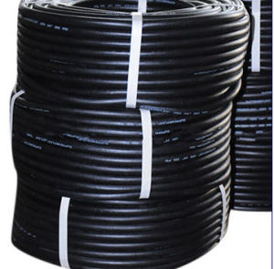 Wire Braid Gasoline Hose for Gas Station pictures & photos