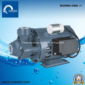 Pm16 0.37kw/0.5HP Electric Water Pump for Domestic Use 1inch Outlet pictures & photos