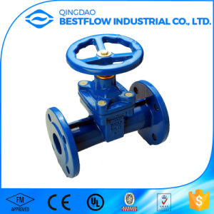 DIN3352 F4 En1711 Cast Iron Gate Valve with Brass Seat pictures & photos