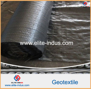 Polypropylene PP Woven Geotextile Geo Fabric pictures & photos