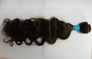 Brazilian Hair Weft (HHW003)